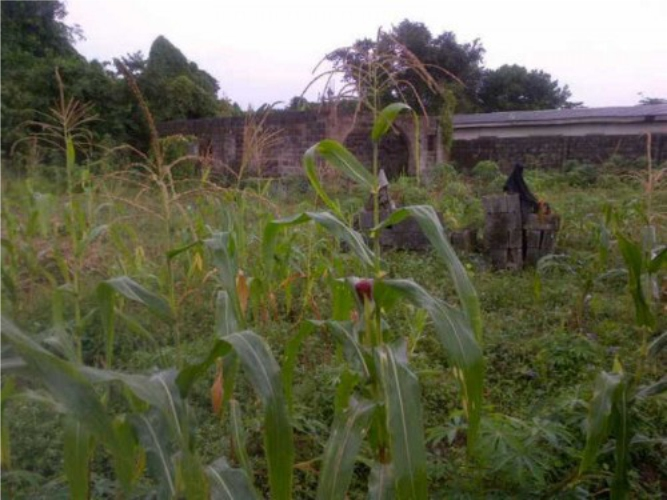Kola Akomolede & Co Property For Sale 2 Plots Of Land With An Uncompleted 4-Bedroom Bungalow Otta, Ogun State